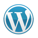 <h3>Wordpress Development</h3>