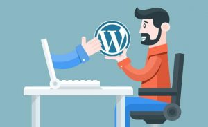 why wordpress is prefect for all type of websites